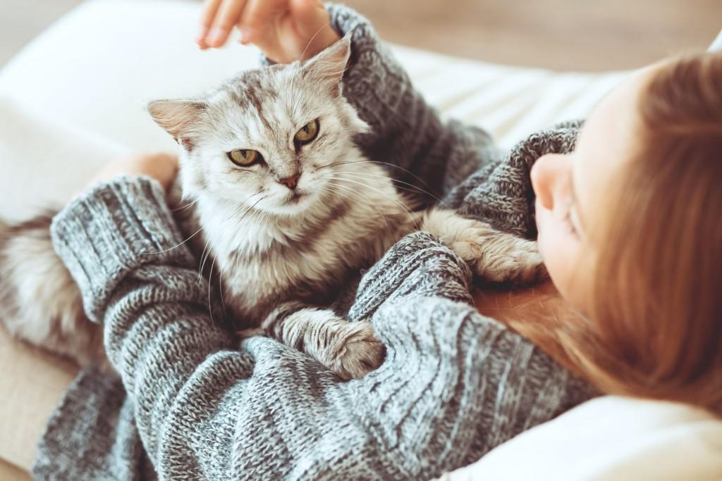 flicka och katt vilar i sängen